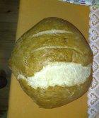 kruh brez glutena